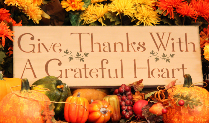 Gratitude is the key element in Thanksgiving.