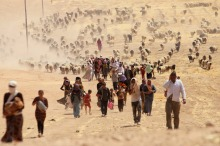 Yazidi refugees on an exodus. | Image source: International Business Times